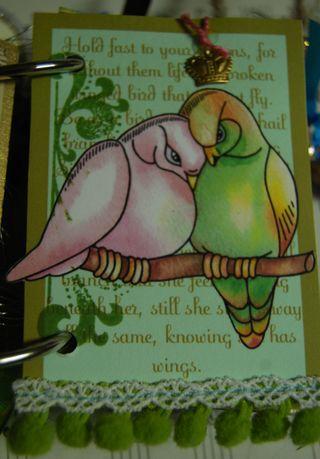 Bird14