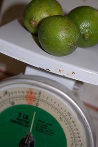 Limes2_2
